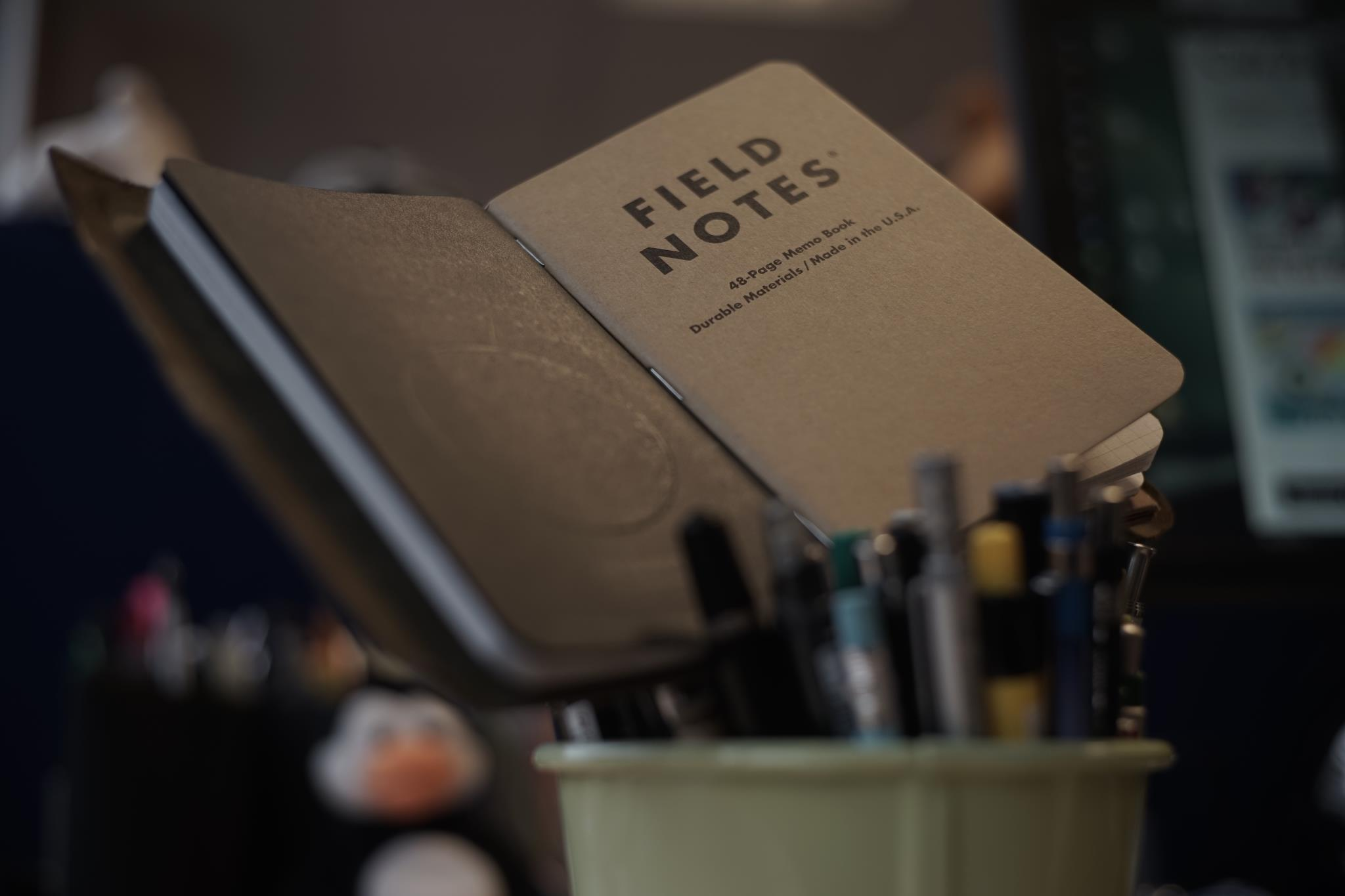 Field Notes in a Paper Republic cover
