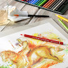Faber-Castell Albrecht Durer Magnus Watercolour Pencil
